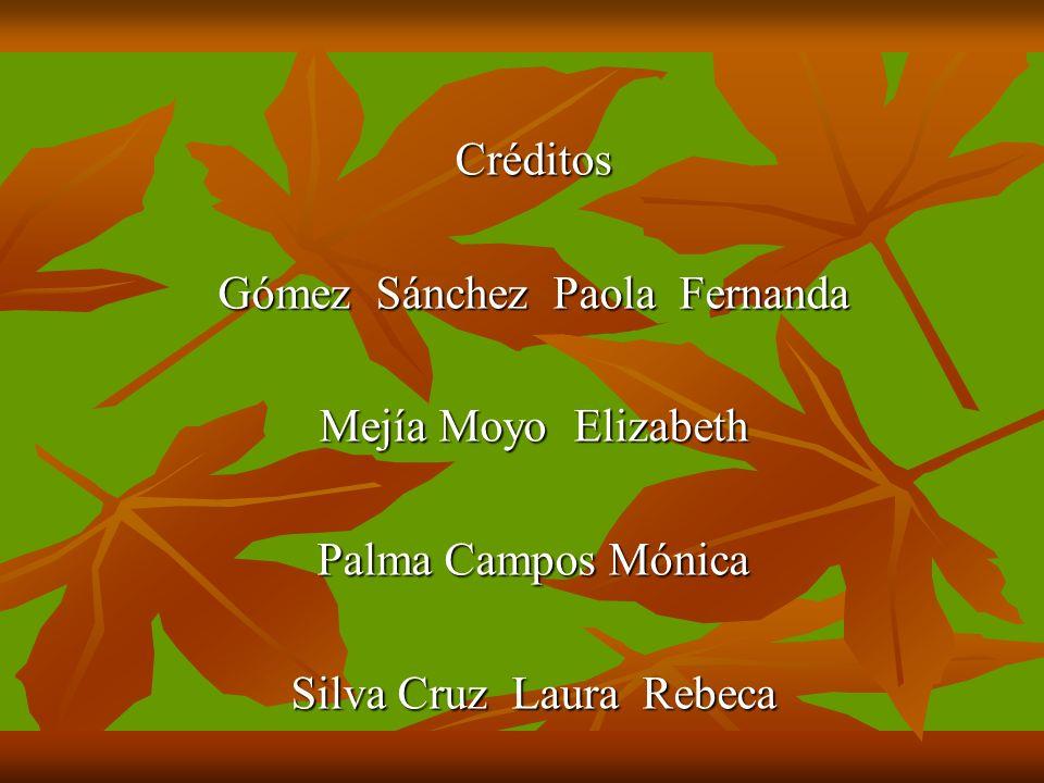 Créditos Gómez Sánchez Paola Fernanda Mejía Moyo Elizabeth Palma Campos Mónica Silva Cruz Laura Rebeca