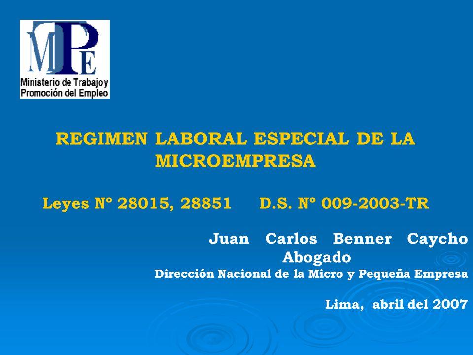 REGIMEN LABORAL ESPECIAL DE LA MICROEMPRESA