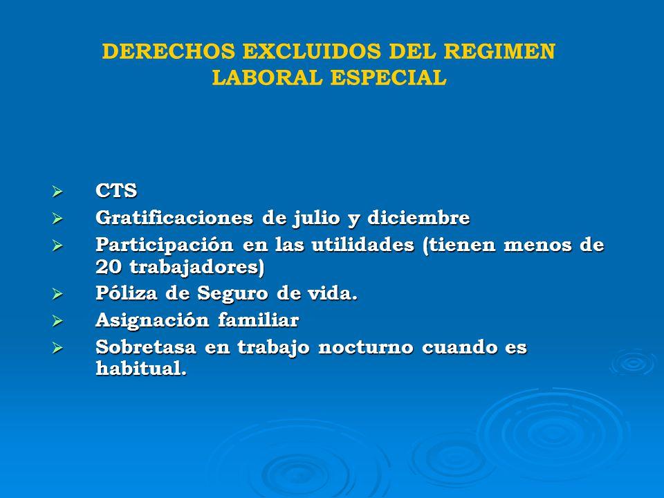DERECHOS EXCLUIDOS DEL REGIMEN LABORAL ESPECIAL