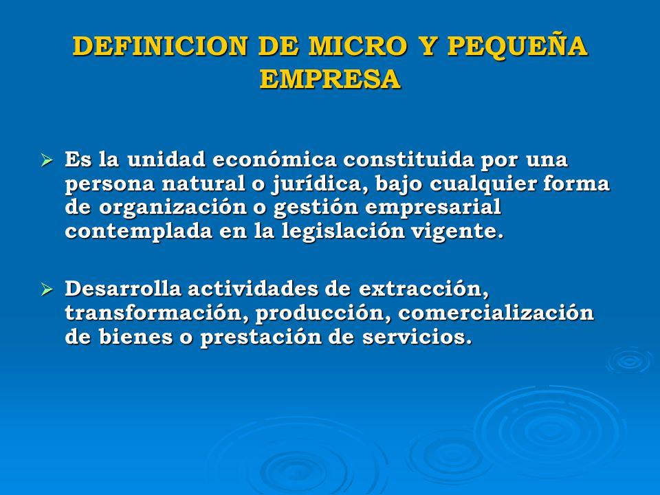 DEFINICION DE MICRO Y PEQUEÑA EMPRESA