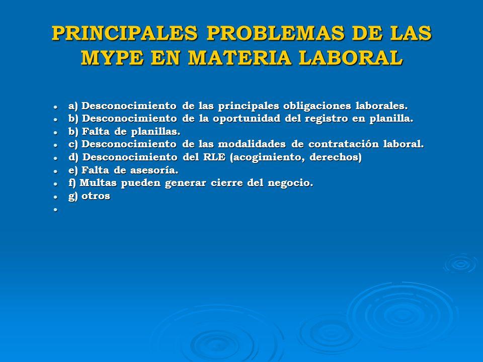 PRINCIPALES PROBLEMAS DE LAS MYPE EN MATERIA LABORAL
