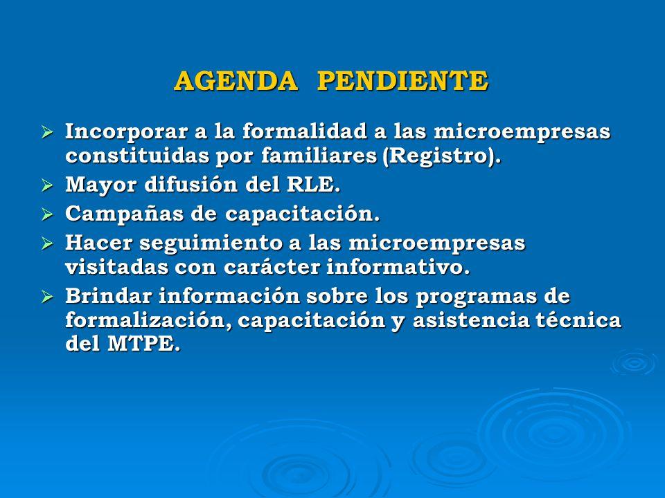 AGENDA PENDIENTE Incorporar a la formalidad a las microempresas constituidas por familiares (Registro).