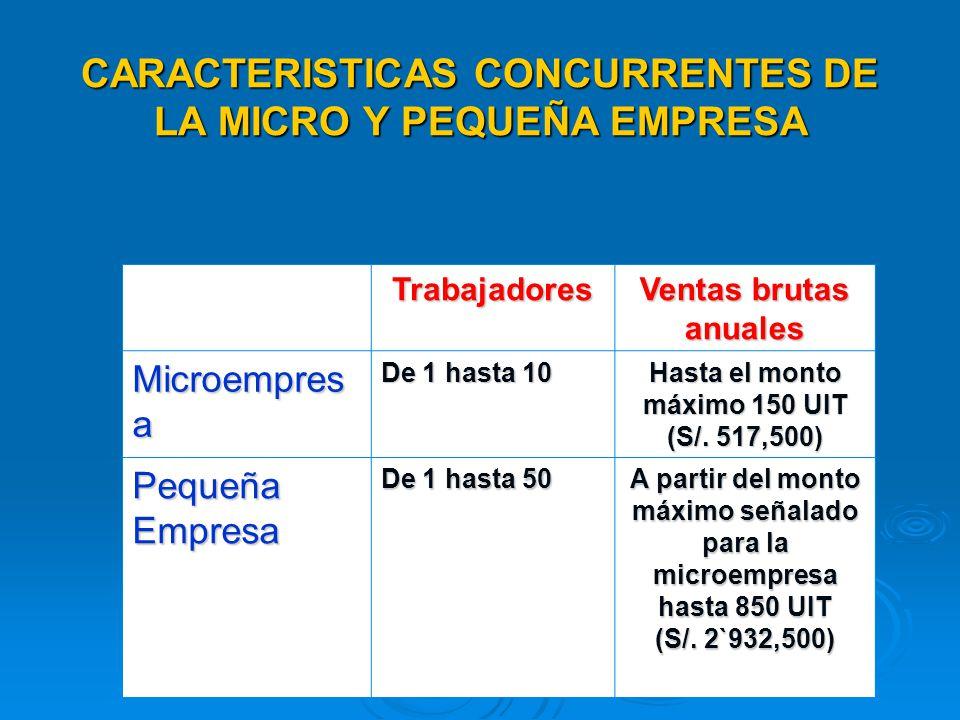 CARACTERISTICAS CONCURRENTES DE LA MICRO Y PEQUEÑA EMPRESA