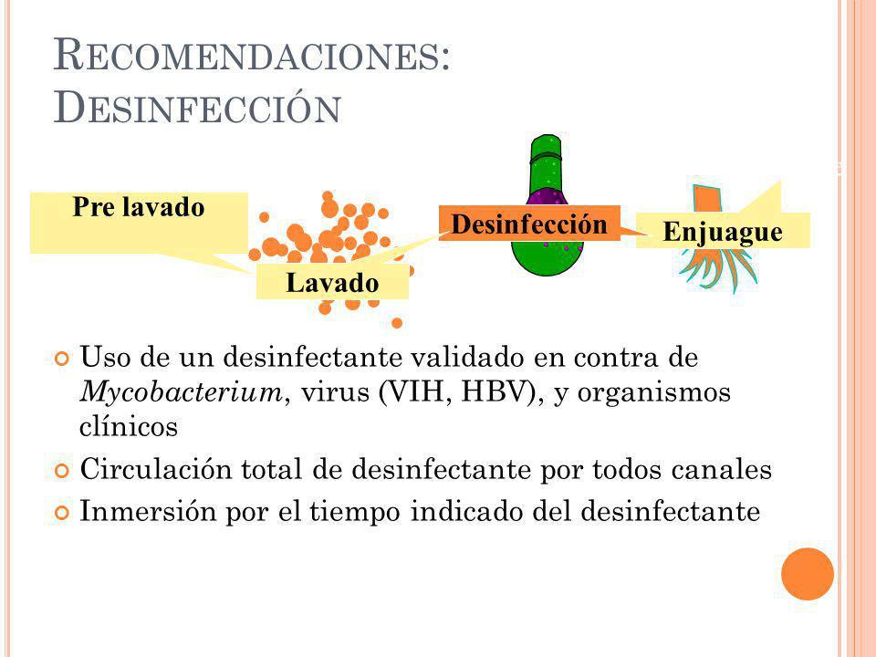 Recomendaciones: Desinfección