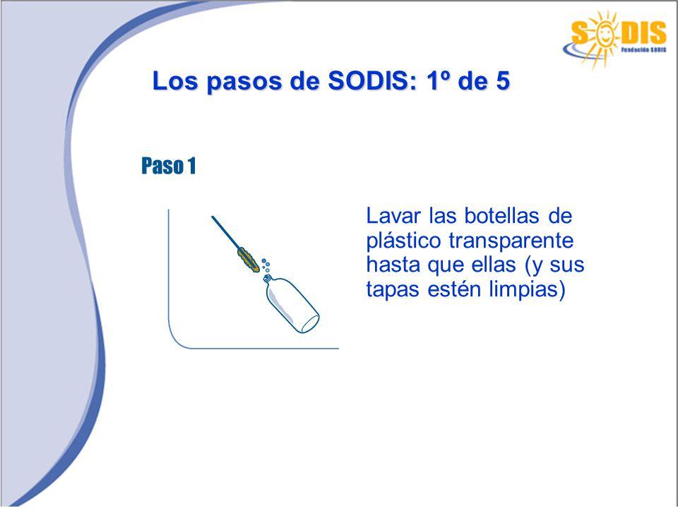 Los pasos de SODIS: 1º de 5 Lavar las botellas de plástico transparente hasta que ellas (y sus tapas estén limpias)