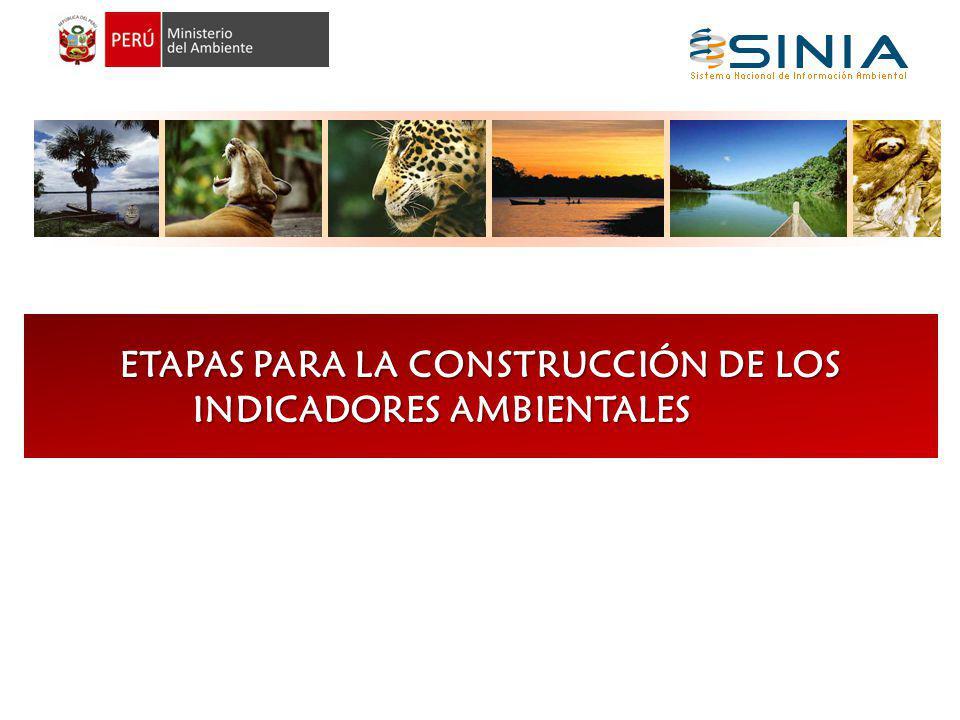 ETAPAS PARA LA CONSTRUCCIÓN DE LOS INDICADORES AMBIENTALES