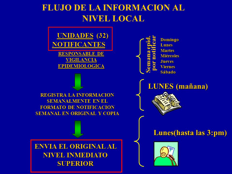 FLUJO DE LA INFORMACION AL NIVEL LOCAL