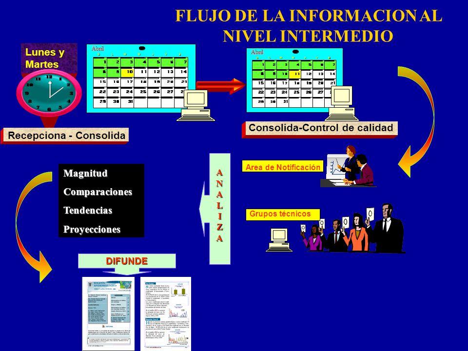 FLUJO DE LA INFORMACION AL NIVEL INTERMEDIO