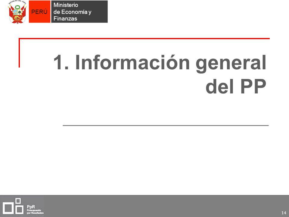 1. Información general del PP