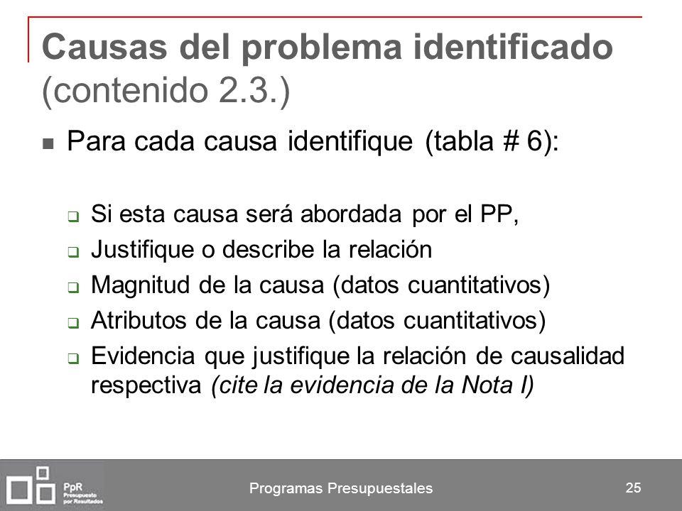 Causas del problema identificado (contenido 2.3.)