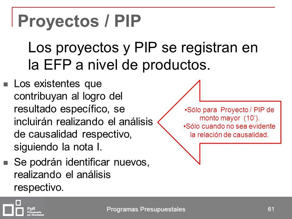 Proyectos / PIP Los proyectos y PIP se registran en la EFP a nivel de productos.