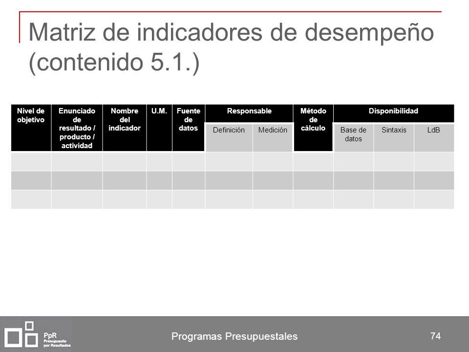 Matriz de indicadores de desempeño (contenido 5.1.)