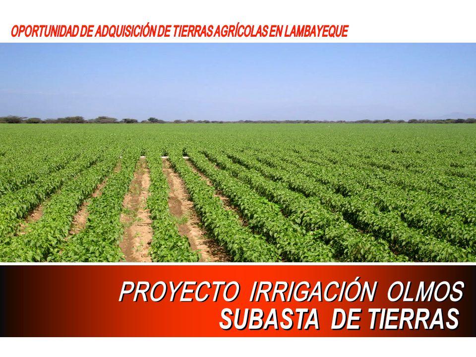 PROYECTO IRRIGACIÓN OLMOS SUBASTA DE TIERRAS