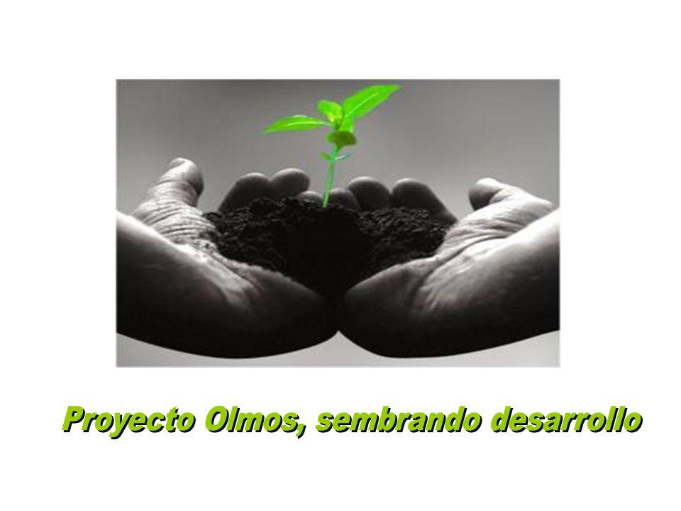Proyecto Olmos, sembrando desarrollo
