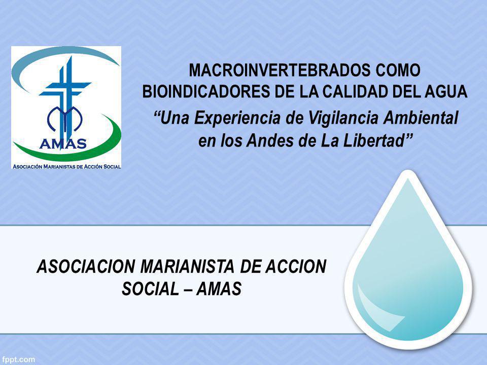Una Experiencia de Vigilancia Ambiental en los Andes de La Libertad