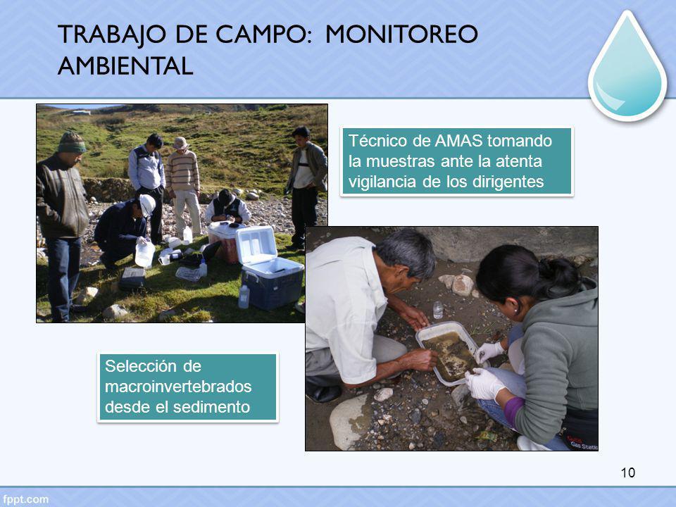 TRABAJO DE CAMPO: MONITOREO AMBIENTAL