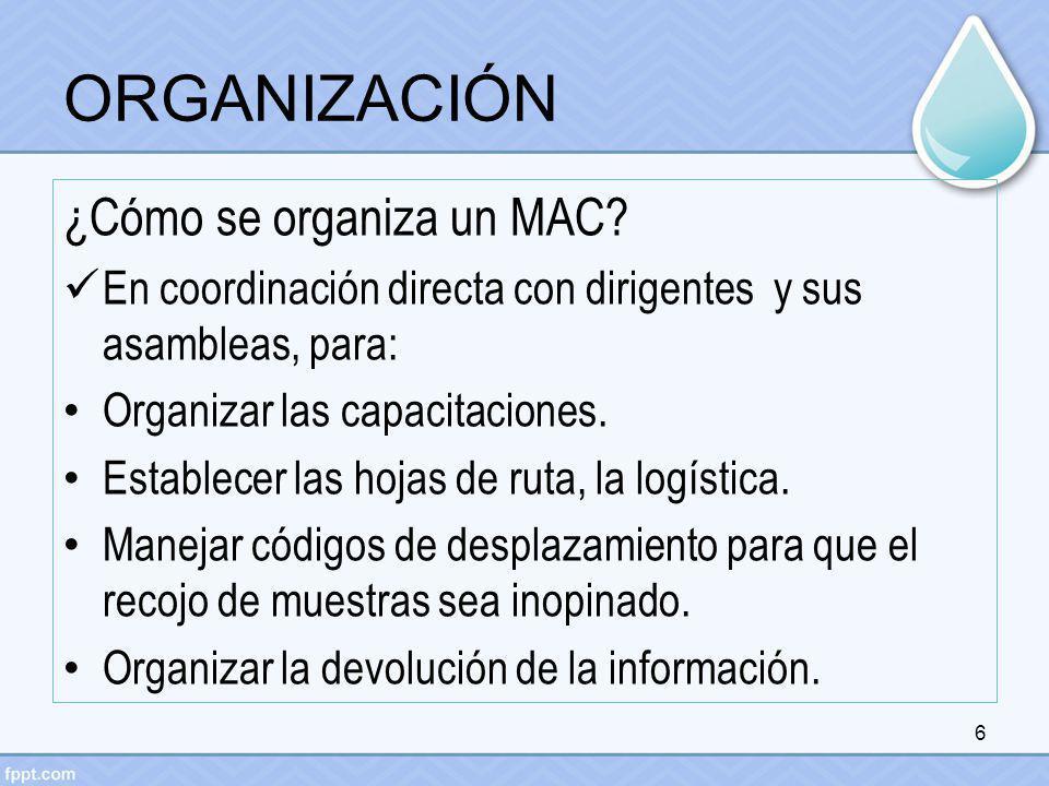 ORGANIZACIÓN ¿Cómo se organiza un MAC