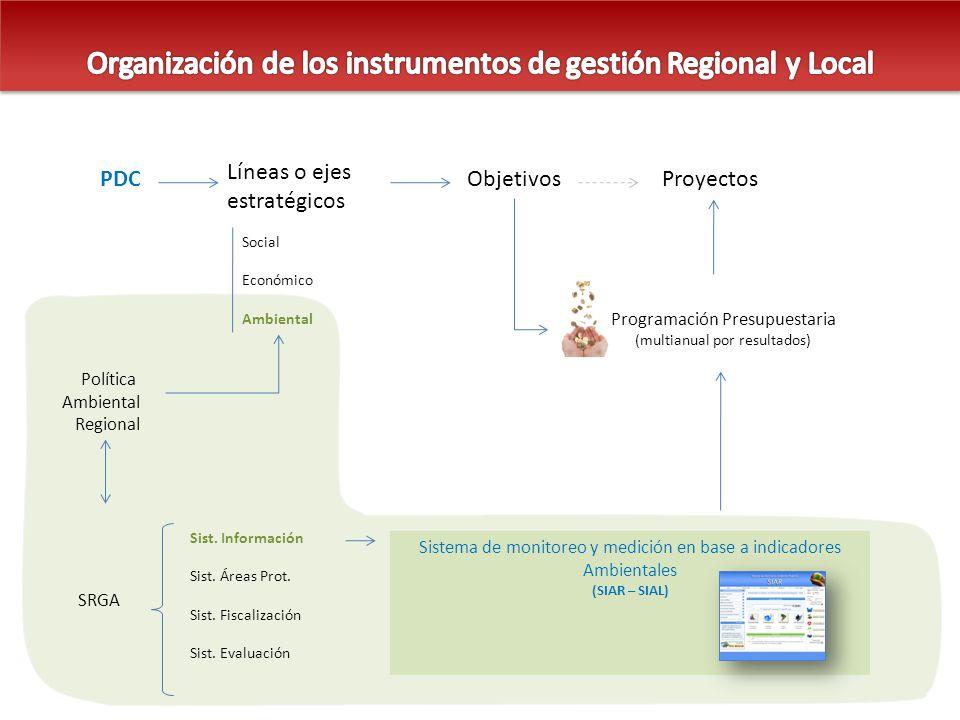 Organización de los instrumentos de gestión Regional y Local