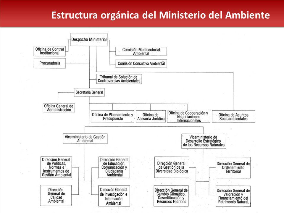 Vice ministerio de gesti n ambiental ppt video online for Estructura organica del ministerio del interior