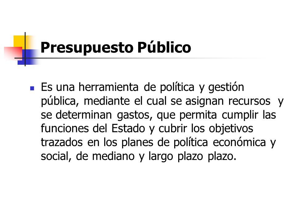 Presupuesto Público