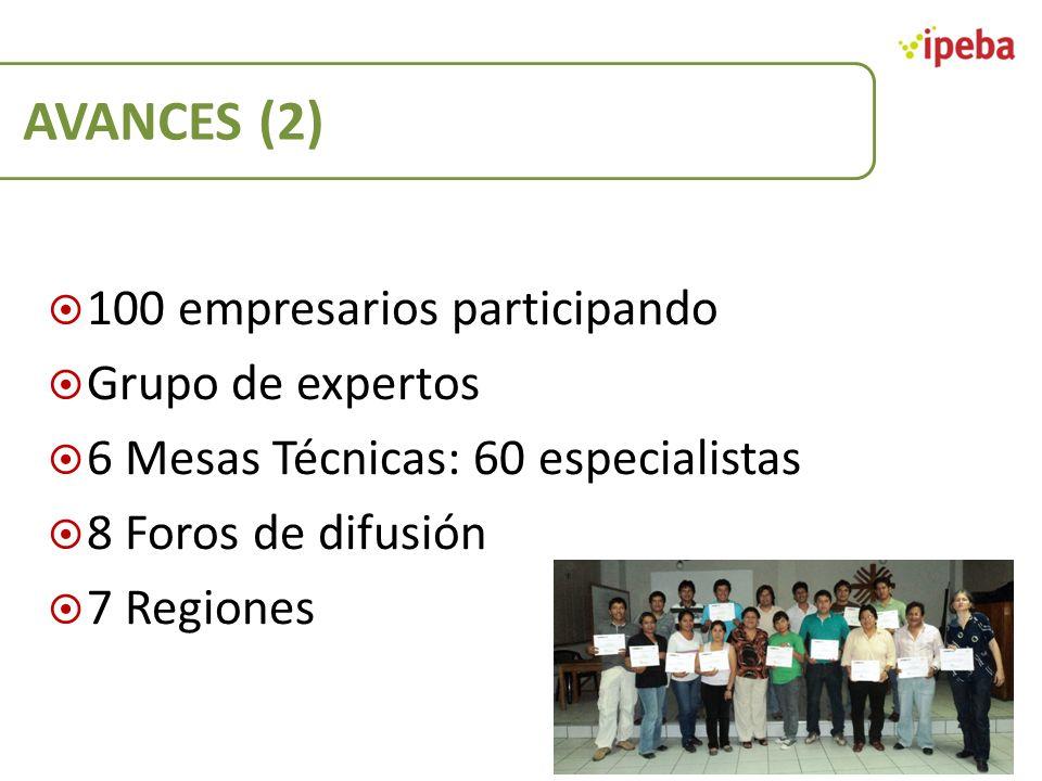 AVANCES (2) 100 empresarios participando Grupo de expertos