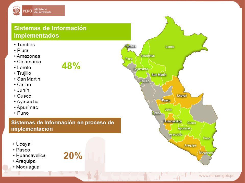 48% 20% Sistemas de Información Implementados