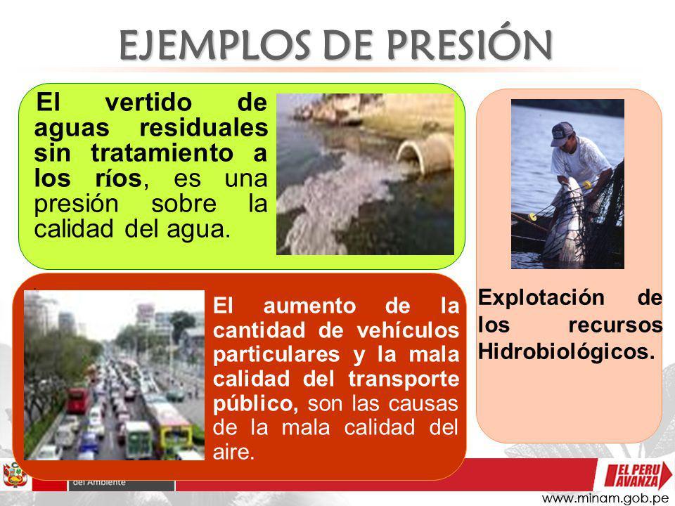 EJEMPLOS DE PRESIÓN Explotación de los recursos Hidrobiológicos.