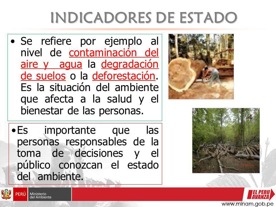 INDICADORES DE ESTADO