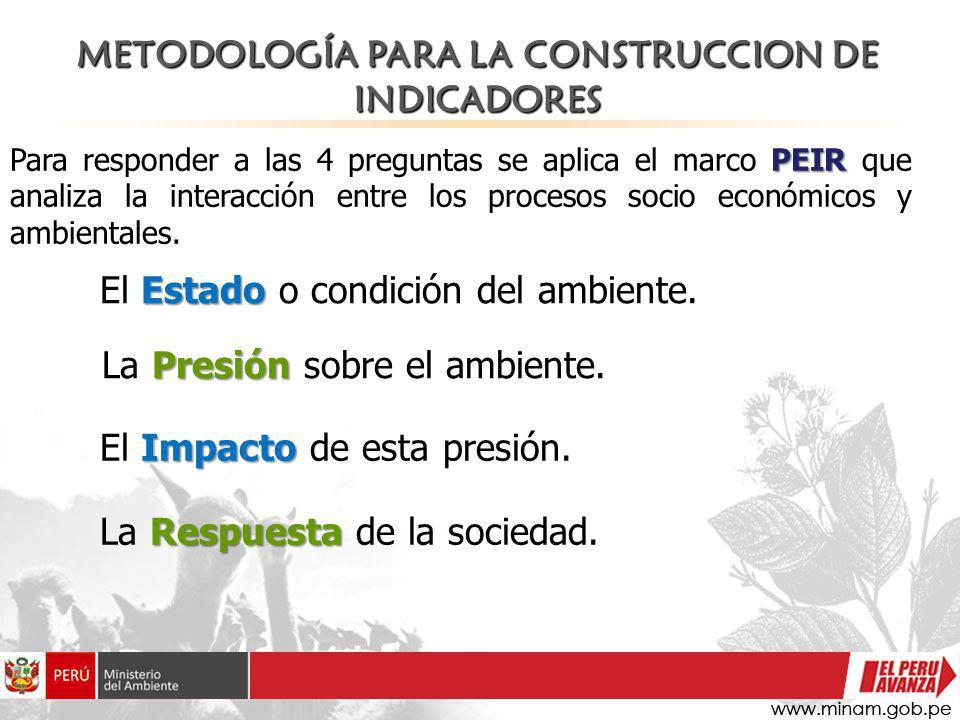 METODOLOGÍA PARA LA CONSTRUCCION DE INDICADORES