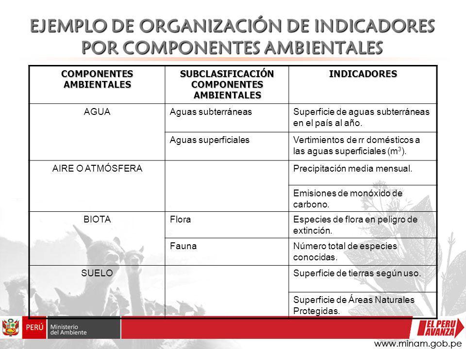 EJEMPLO DE ORGANIZACIÓN DE INDICADORES POR COMPONENTES AMBIENTALES