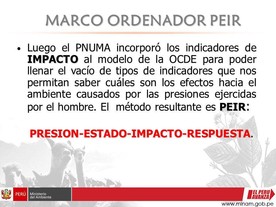 PRESION-ESTADO-IMPACTO-RESPUESTA.