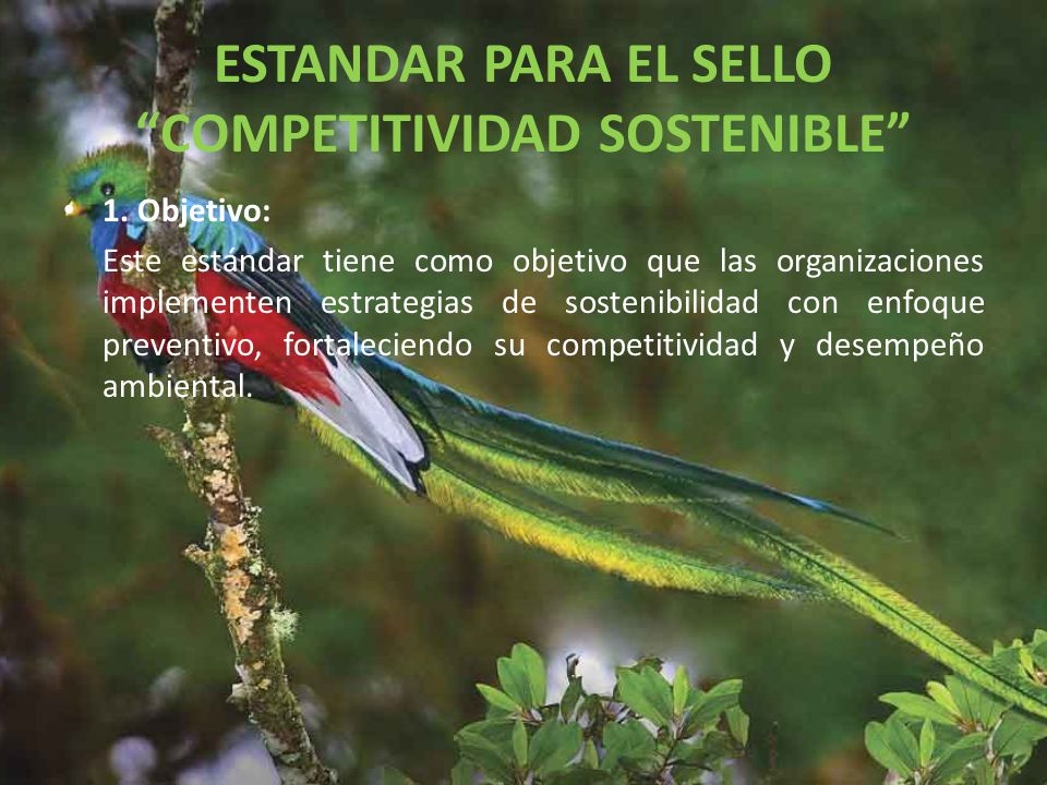 ESTANDAR PARA EL SELLO COMPETITIVIDAD SOSTENIBLE