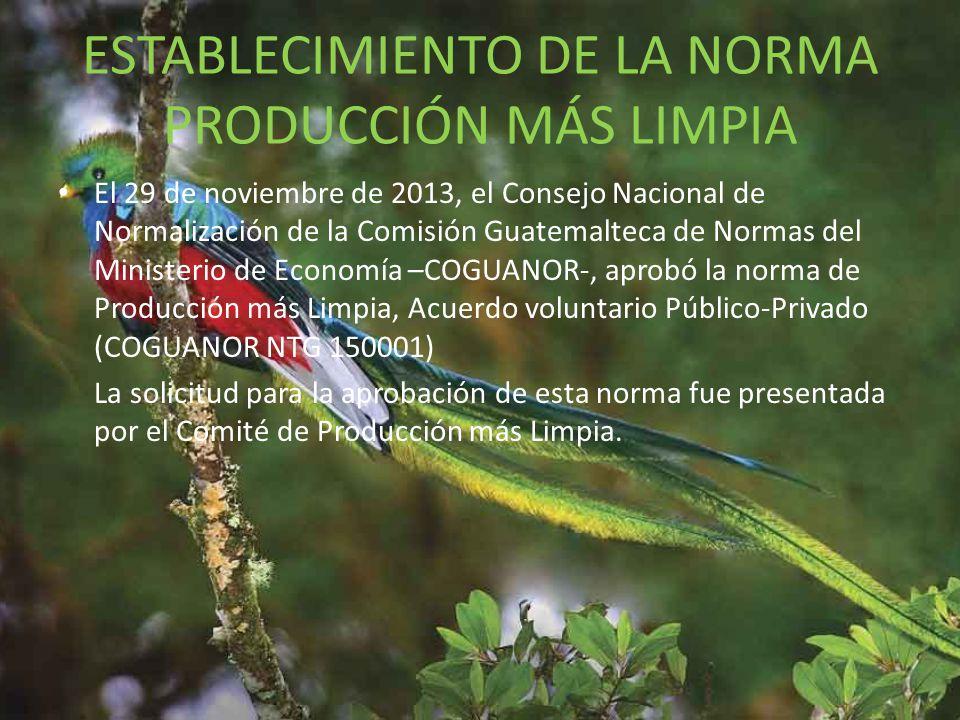ESTABLECIMIENTO DE LA NORMA PRODUCCIÓN MÁS LIMPIA
