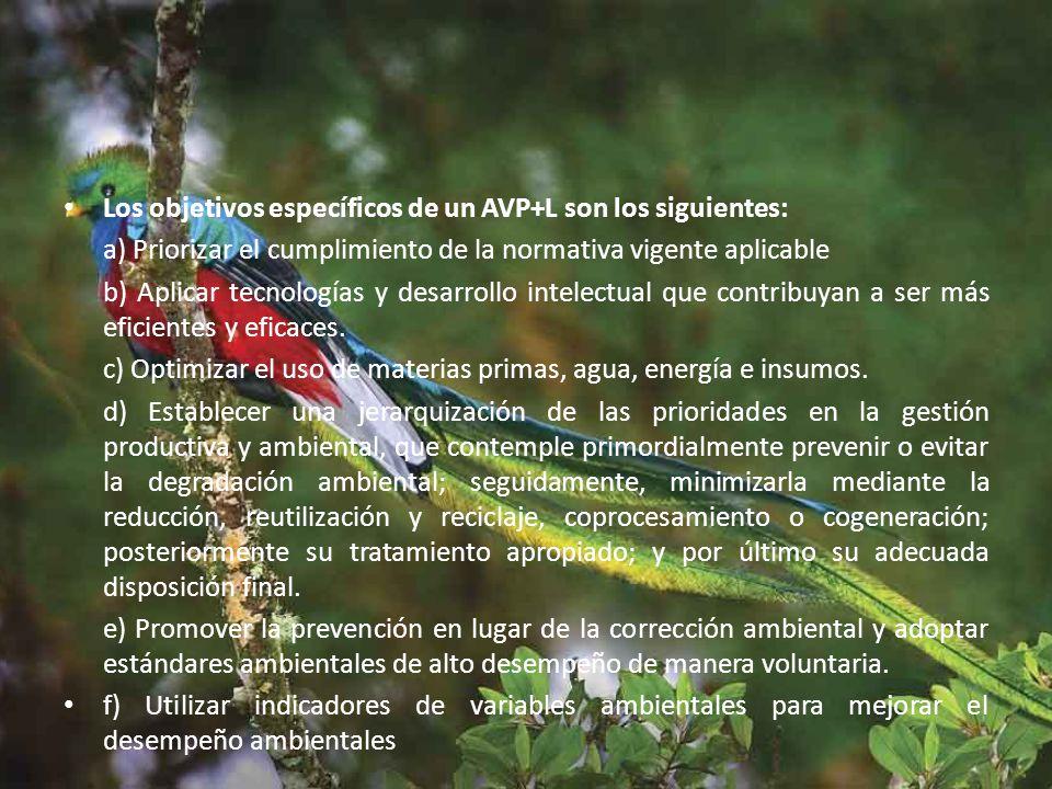 Los objetivos específicos de un AVP+L son los siguientes: