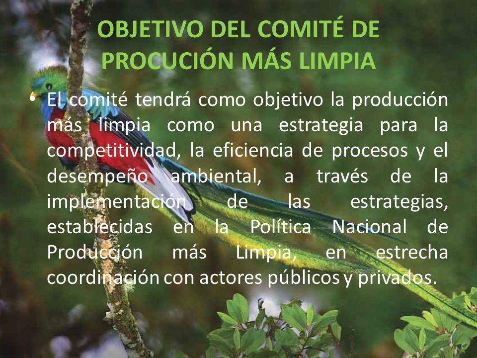 OBJETIVO DEL COMITÉ DE PROCUCIÓN MÁS LIMPIA
