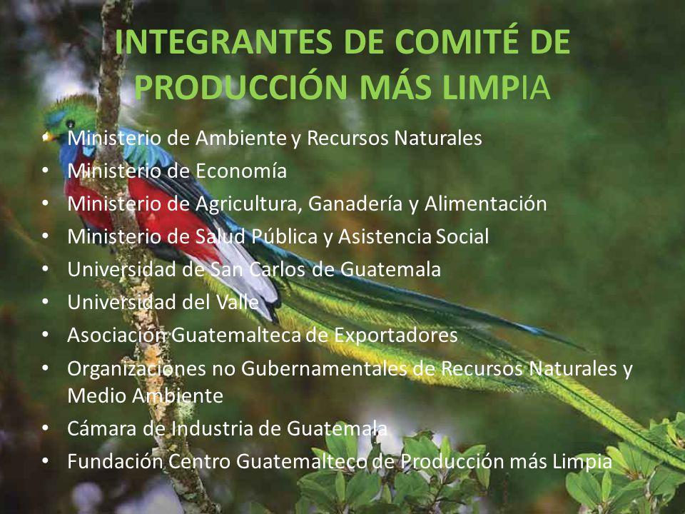INTEGRANTES DE COMITÉ DE PRODUCCIÓN MÁS LIMPIA