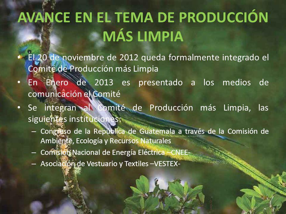 AVANCE EN EL TEMA DE PRODUCCIÓN MÁS LIMPIA