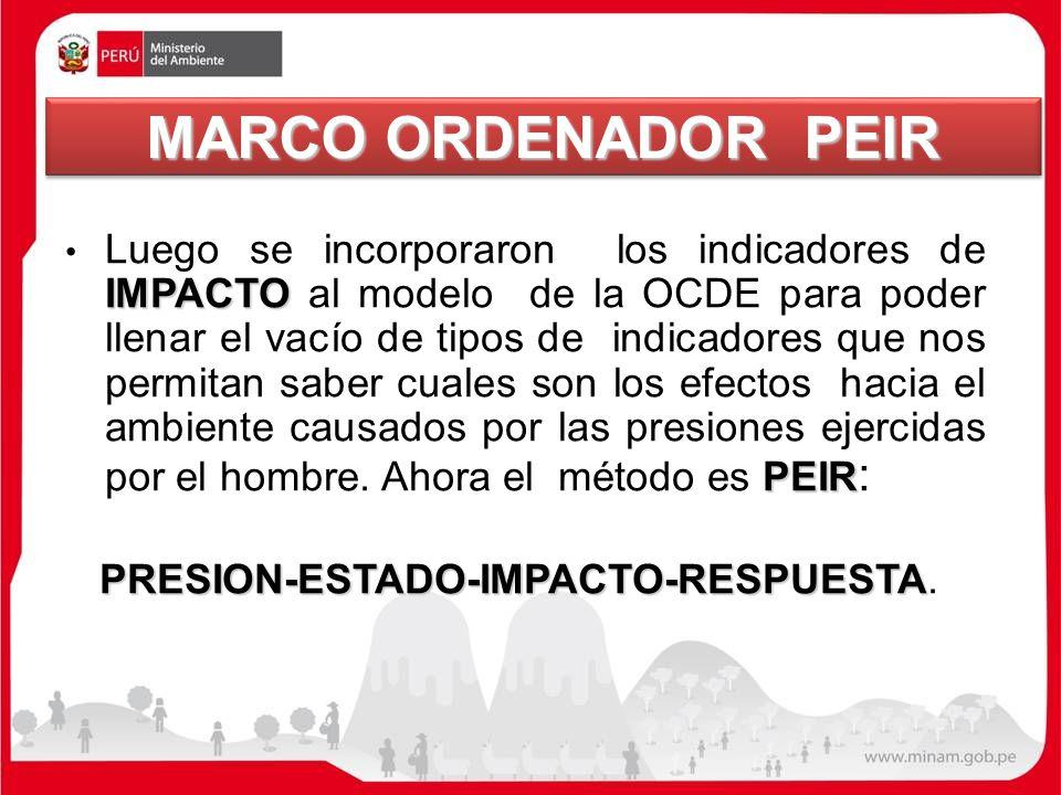 MARCO ORDENADOR PEIR