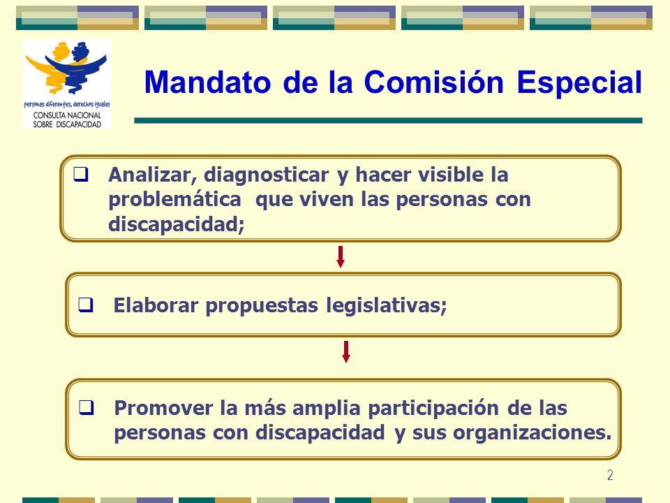 Mandato de la Comisión Especial