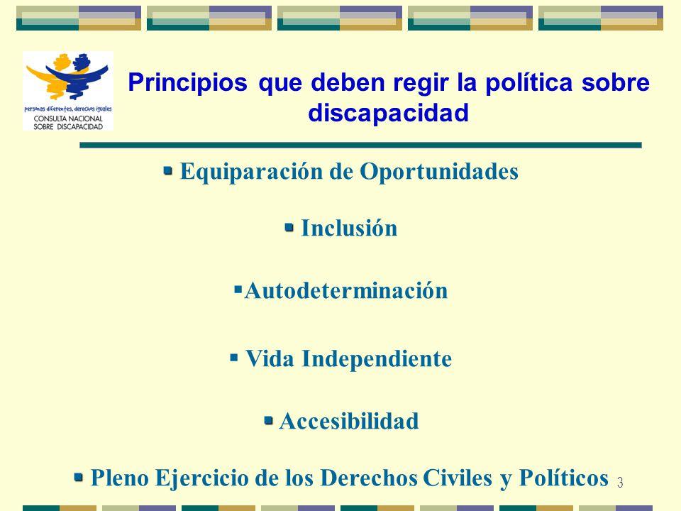 Principios que deben regir la política sobre discapacidad