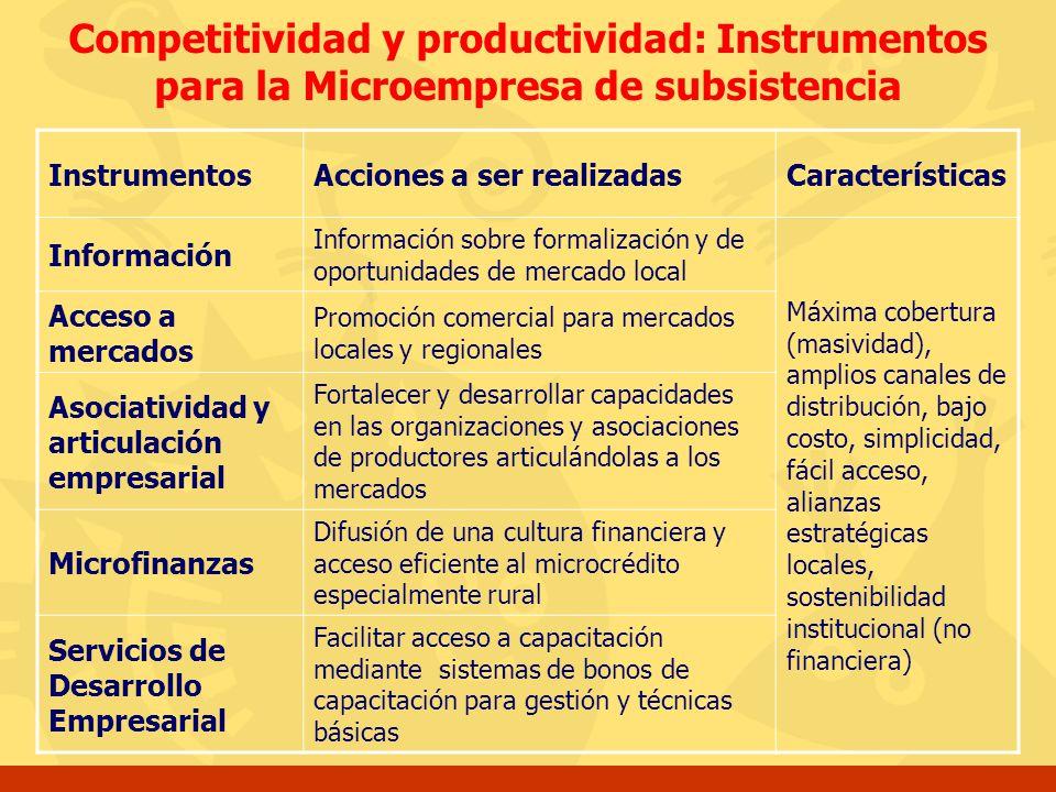 Competitividad y productividad: Instrumentos para la Microempresa de subsistencia