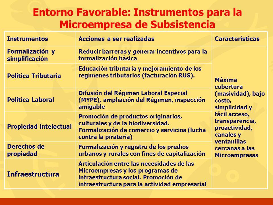 Entorno Favorable: Instrumentos para la Microempresa de Subsistencia