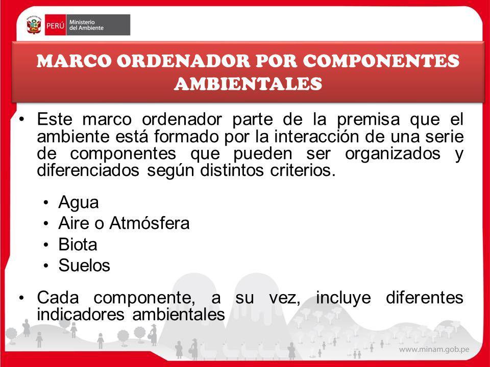 MARCO ORDENADOR POR COMPONENTES AMBIENTALES