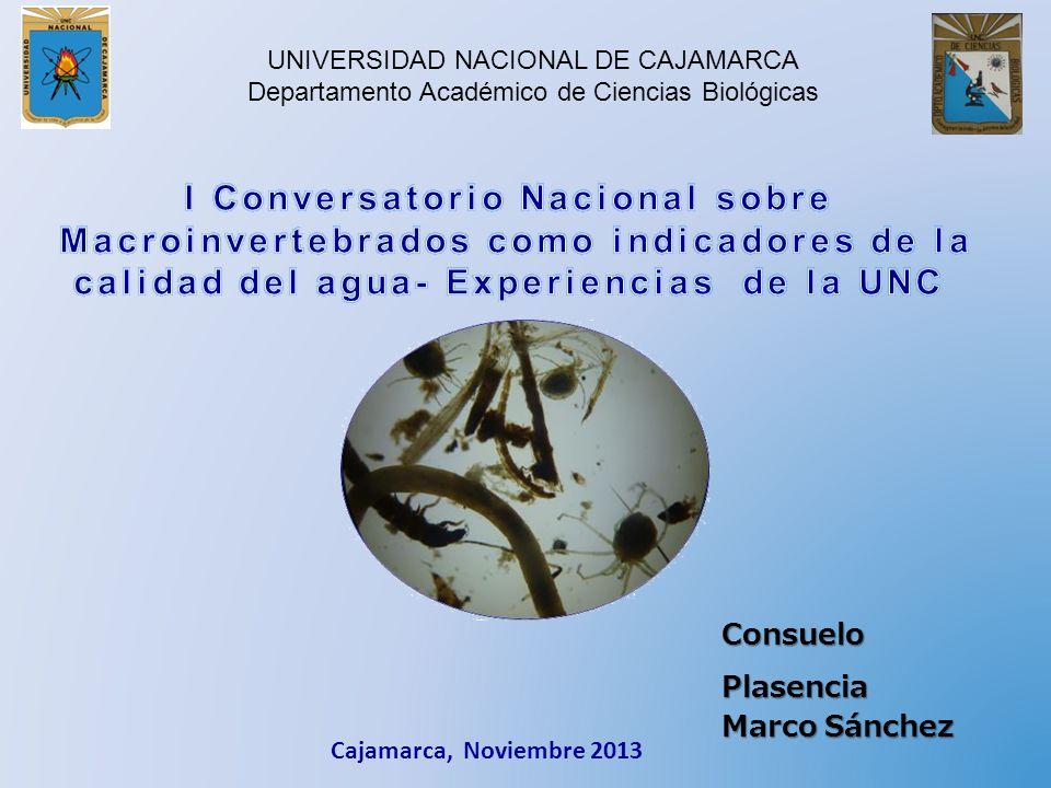 I Conversatorio Nacional sobre