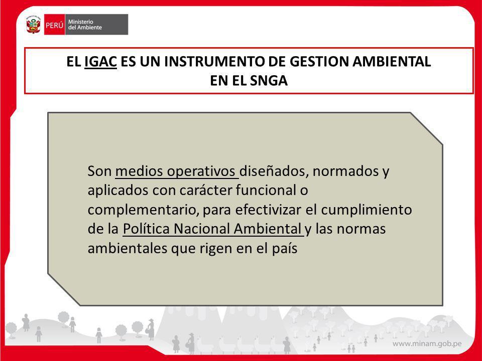 EL IGAC ES UN INSTRUMENTO DE GESTION AMBIENTAL EN EL SNGA
