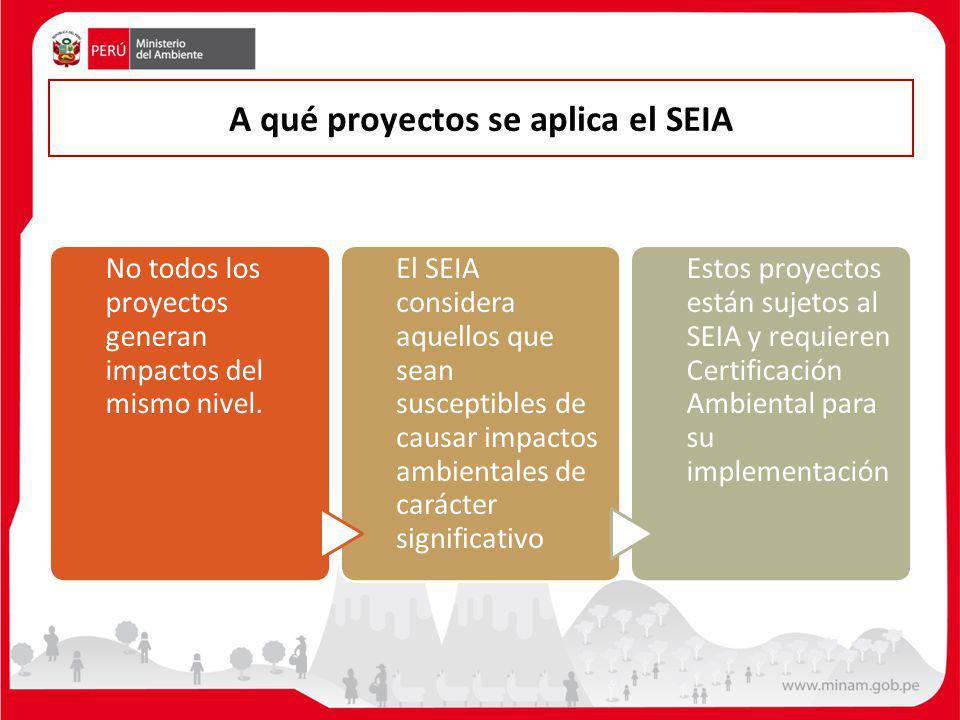 A qué proyectos se aplica el SEIA
