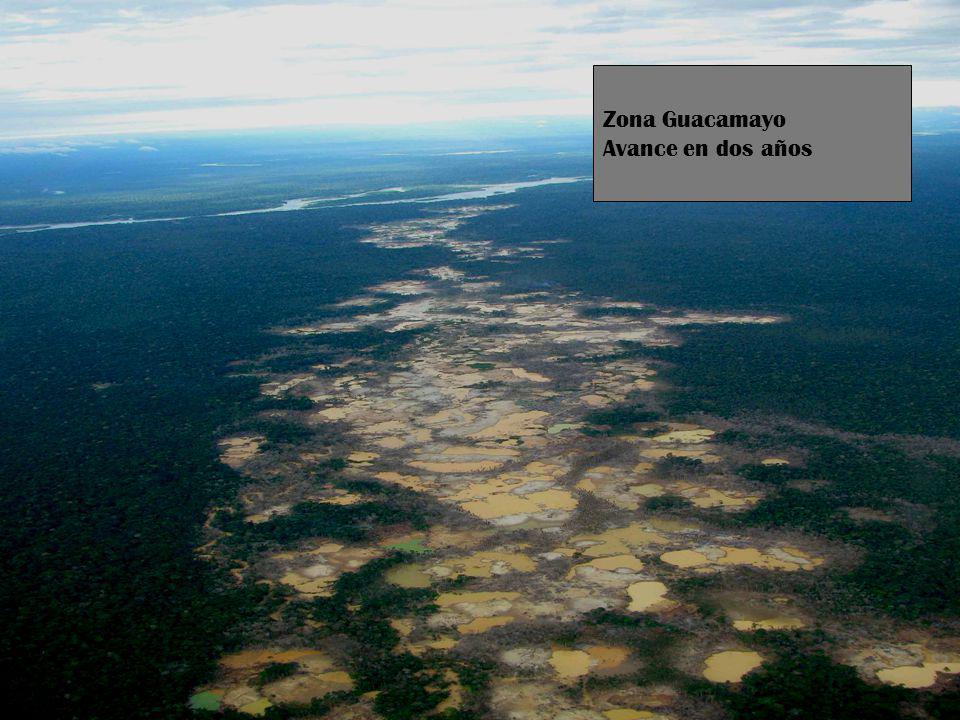 Zona Guacamayo Avance en dos años