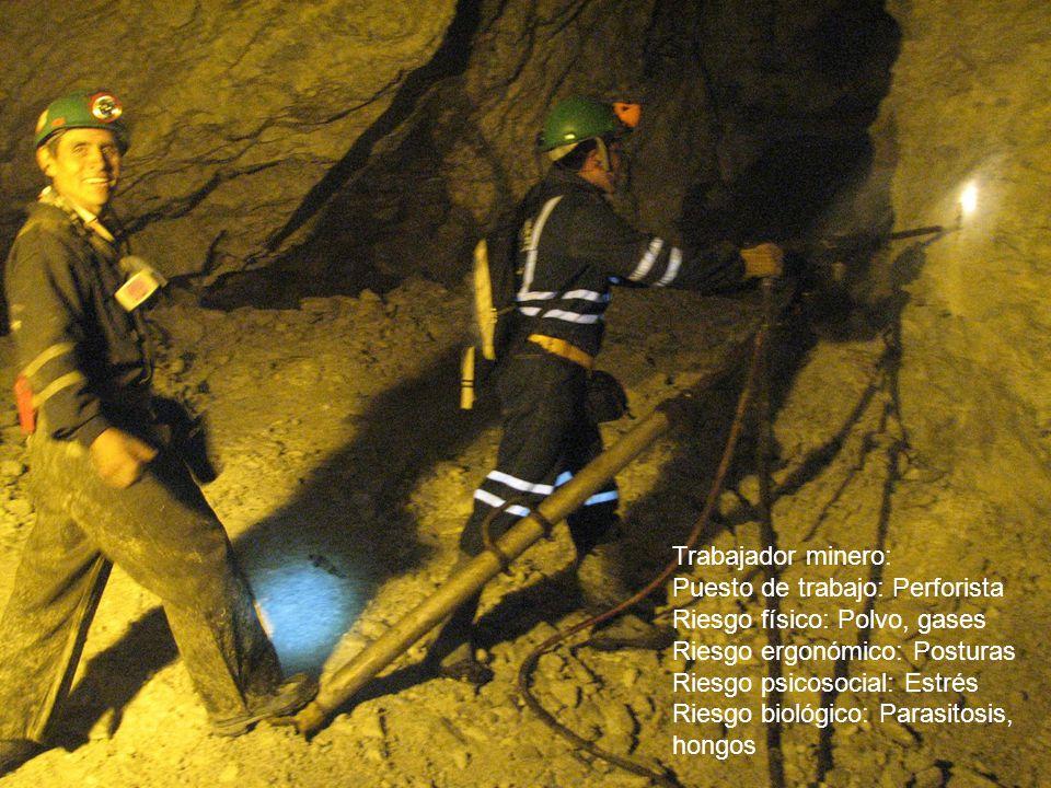 Trabajador minero: Puesto de trabajo: Perforista. Riesgo físico: Polvo, gases. Riesgo ergonómico: Posturas.