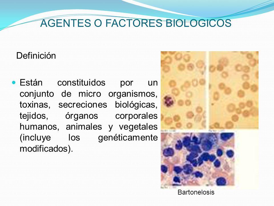 AGENTES O FACTORES BIOLOGICOS
