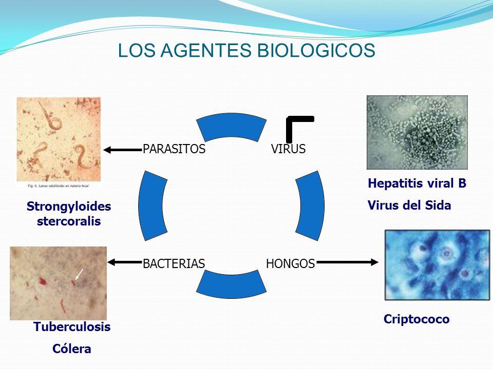 LOS AGENTES BIOLOGICOS